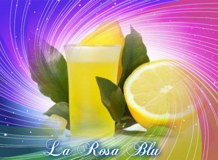 LIMONCELLO CASALINGO